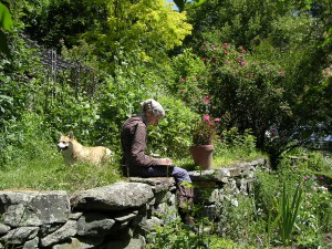 喜びは創りだすもの ~ターシャ・テューダー四季の庭~