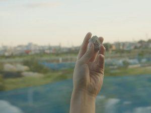 映画『眠る虫』サブ画像2